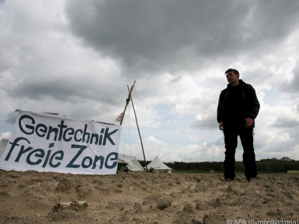 Umweltaktivisten leben gefährlich