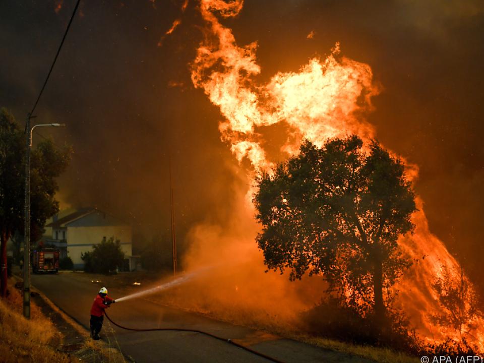 3.000 Feuerwehrleute sind im Einsatz