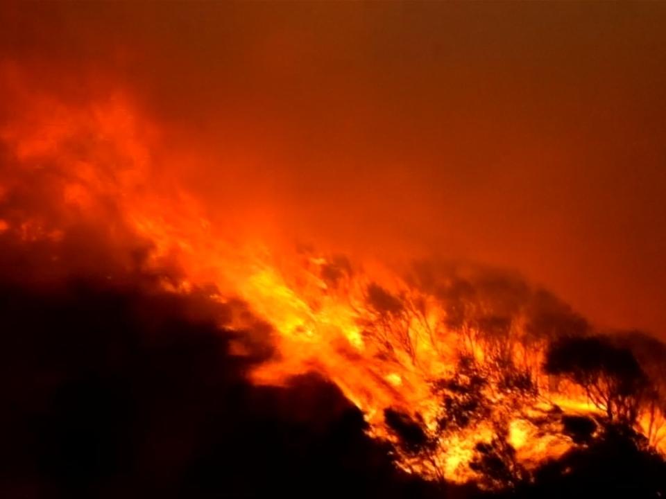 Heftige Waldbrände im Norden Spaniens
