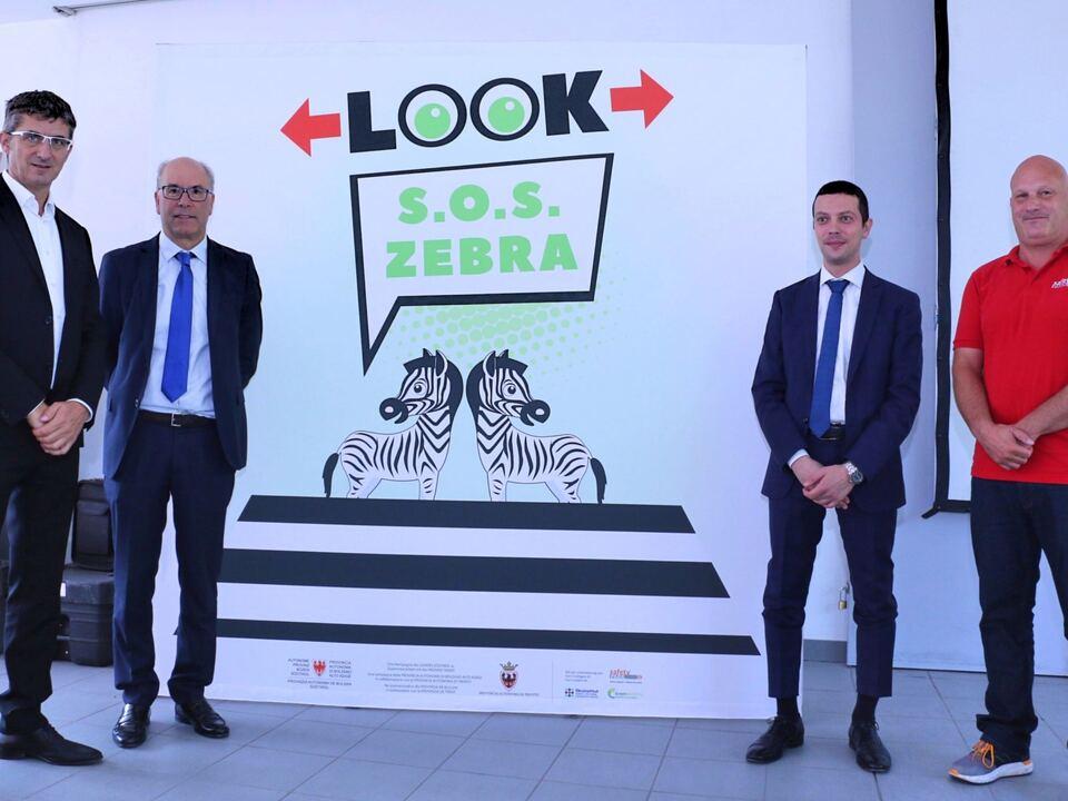 S.O.S. Zebra 2017
