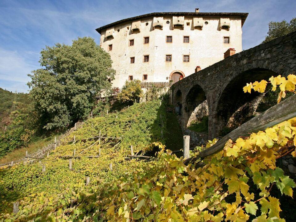 Prissian Schloss Katzenzugen rebe wein versoalen burggrafenamt südtirol sym