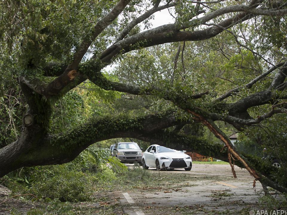 Die Folgen des Sturms sind unübersehbar