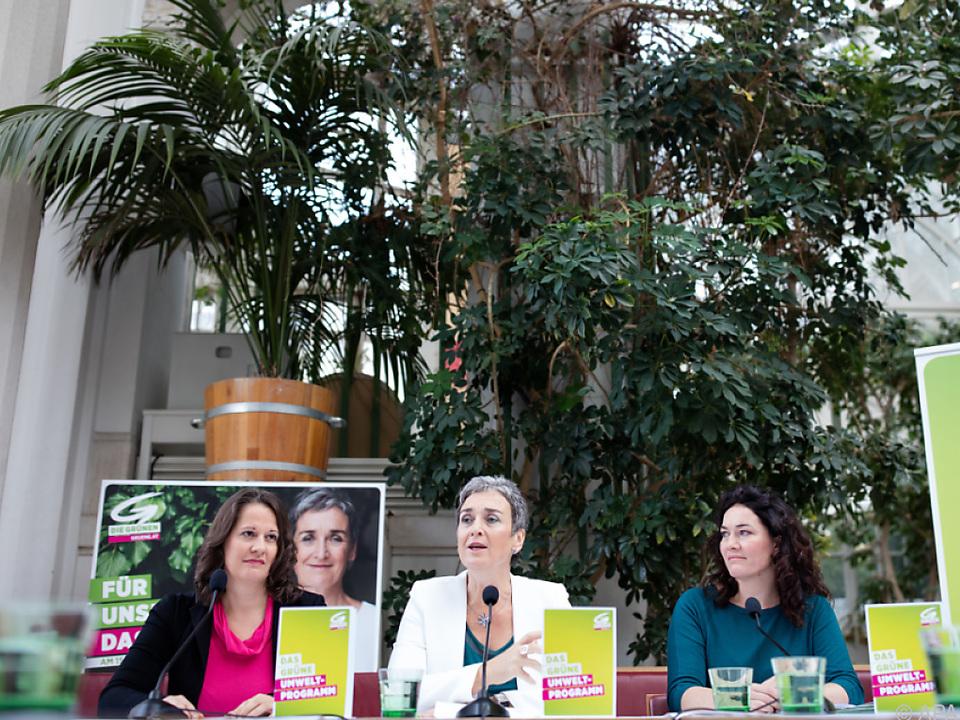 Die Grüne wählten für ihre Präsentation das Palmenhaus