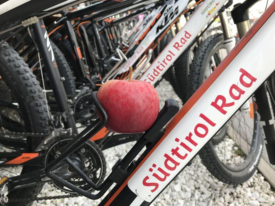 Südtirol Fahrradverleih Apfel