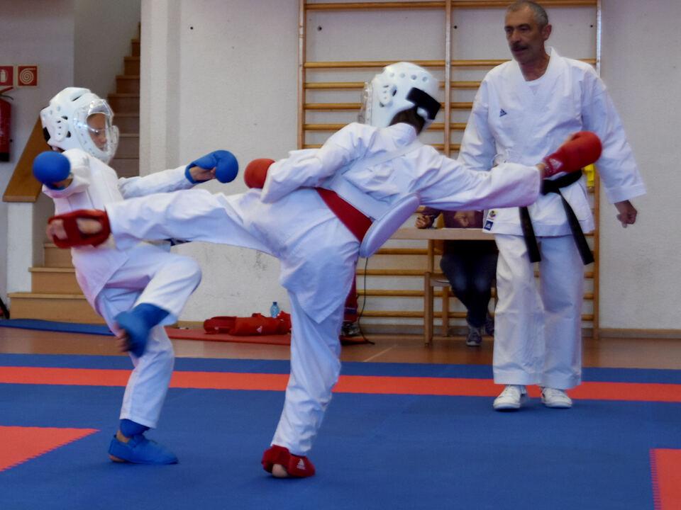 Karate Mühlbach
