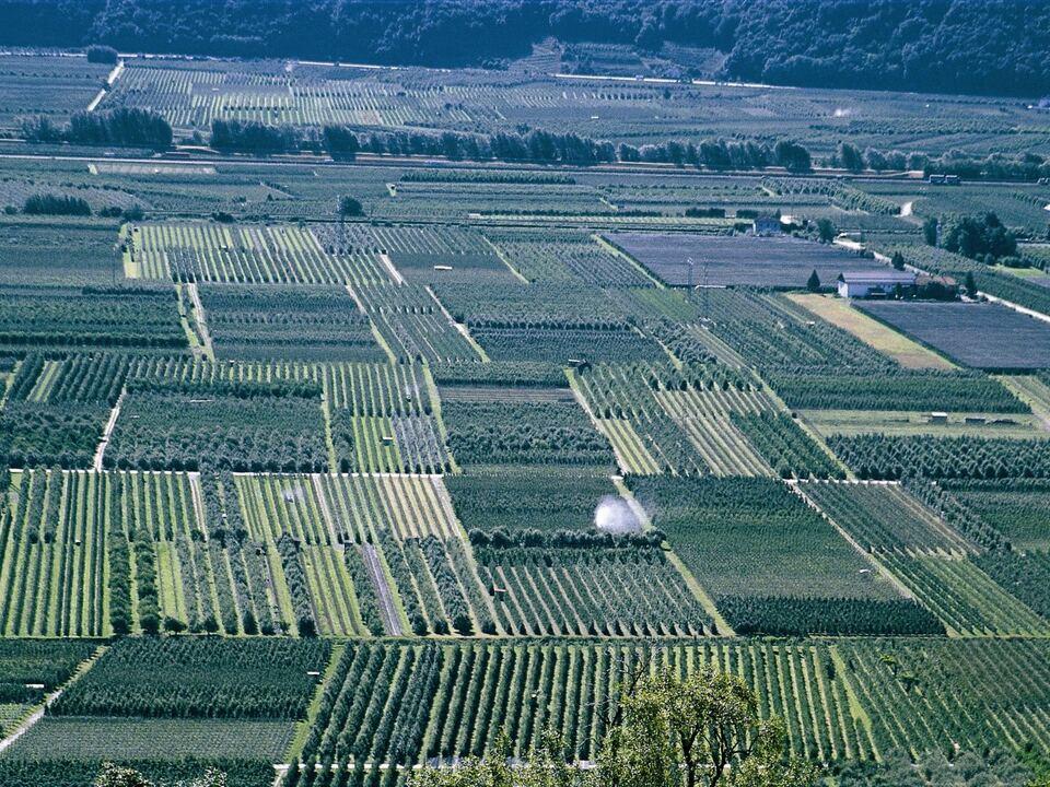 raumordnung apfelbäume spritzen monokultur sym landwirtschaft bauer südtirol
