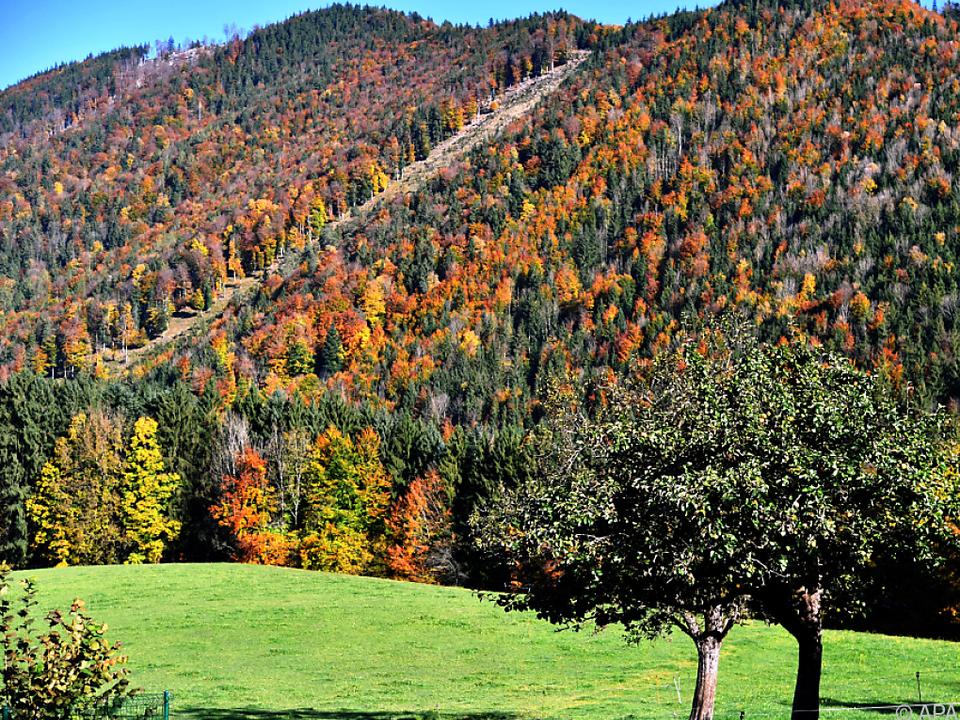 Bunte Herbstfarben bei Sonnenschein stehen auf dem Programm