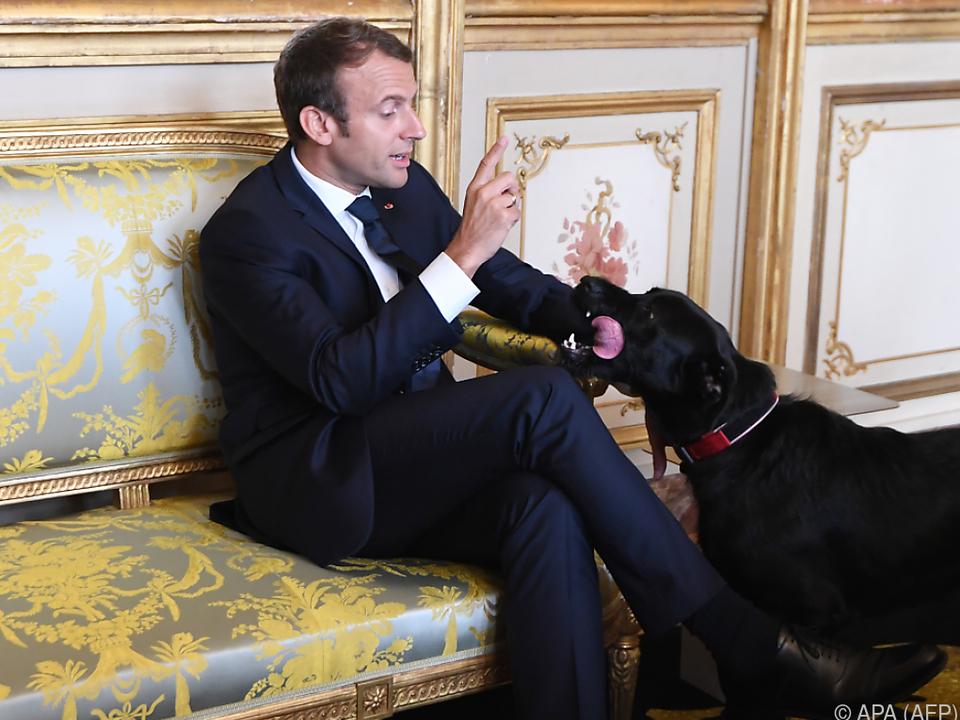 Präsident Macron mit seinem Hund Nemo