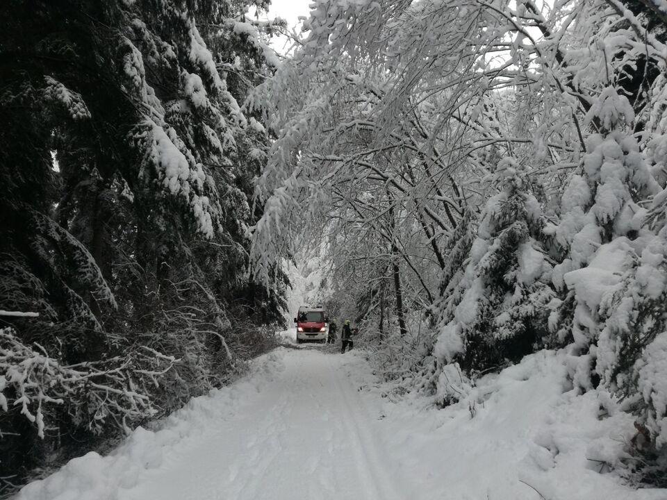 schnee winter auto