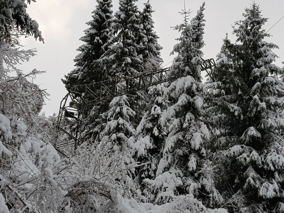 Schnee Strommast