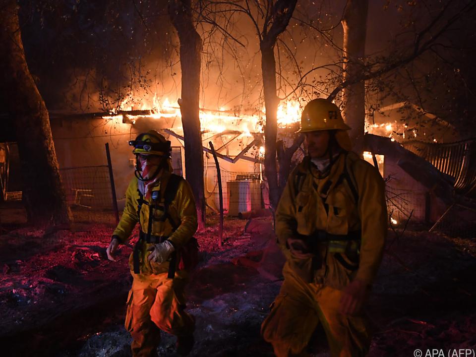 Feuerwehr im Dauereinsatz gegen die Flammen