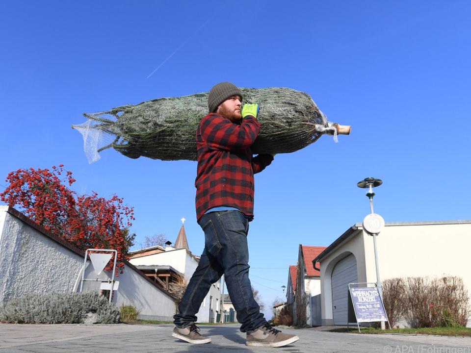 Mehr als 80 Prozent stellen einen einen Christbaum auf