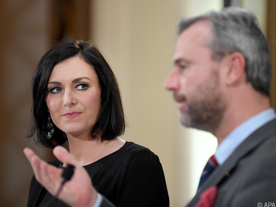 ÖVP/FPÖ setzen auf erneuerbare Energie
