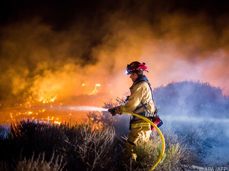 Zahlreiche Feuerwehrleute kämpfen gegen die Flammen