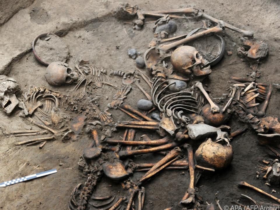 Die Forscher legten zehn Skelette frei
