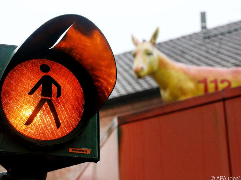 Wesel hofft auf Erlaubnis für den Ampel-Esel