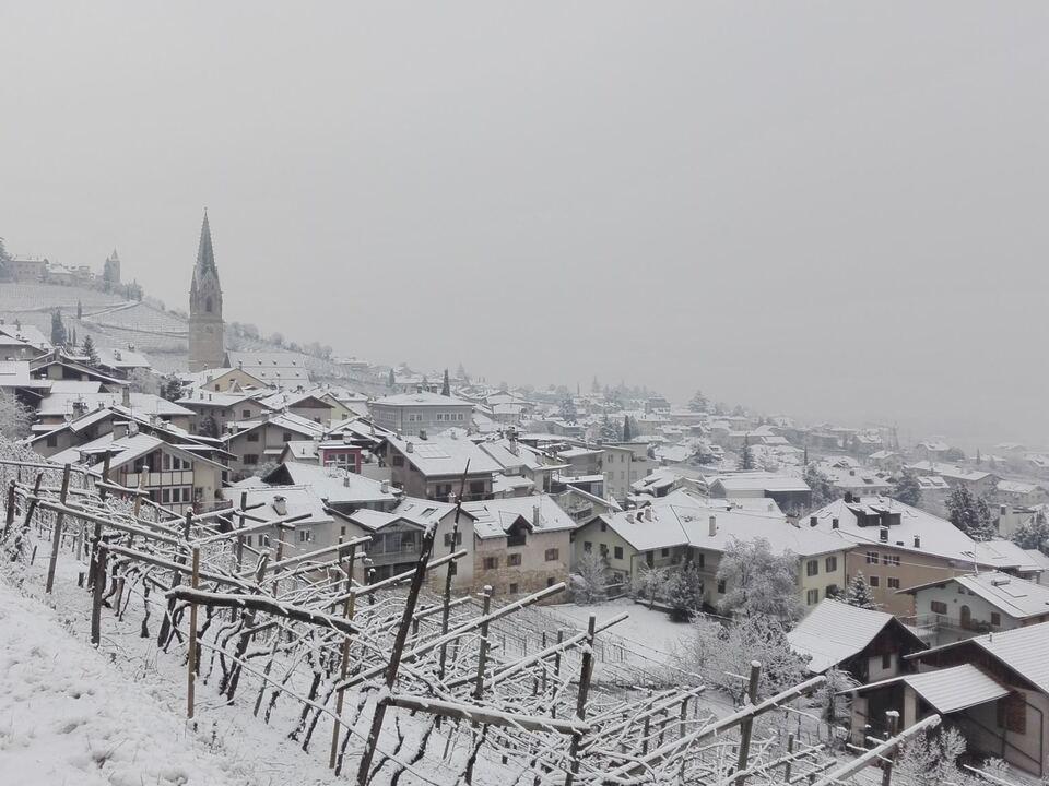 winter_schnee_tramin_13-01-2017