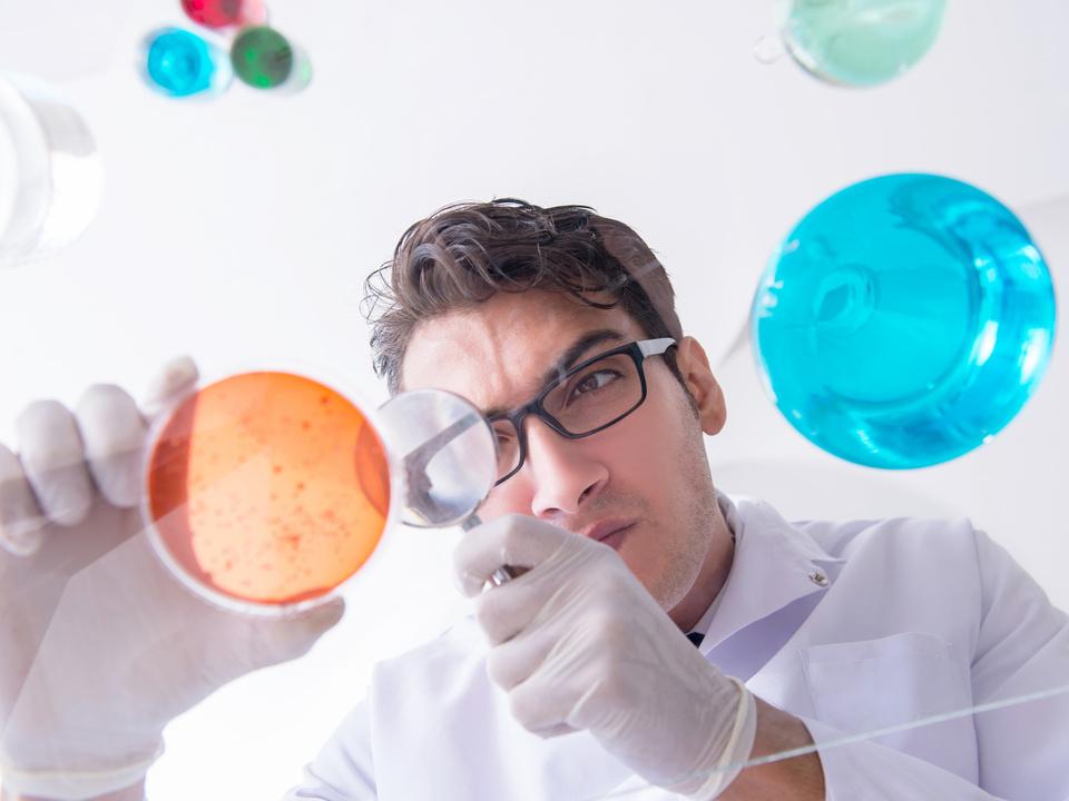 labor forschung sym grippe viren arzt nährboden