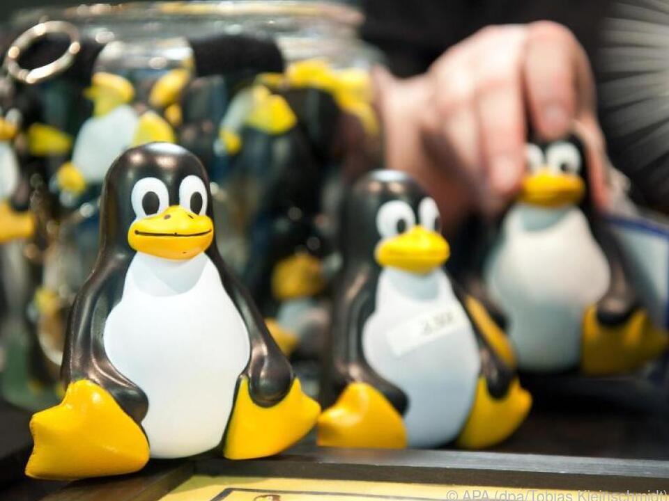 Tux sind die bekannten Maskottchen der Open-Source-Plattform Linux