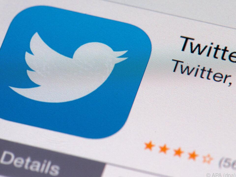 Twitter-Vögelchen im Aufwind