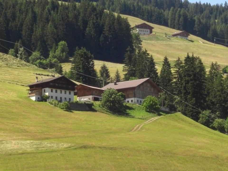 Bergbauern Bauernhof Berg