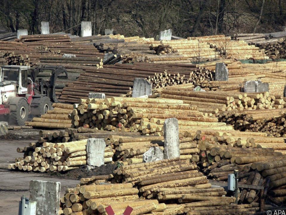 Österreichisches Holz geht in die ganze Welt