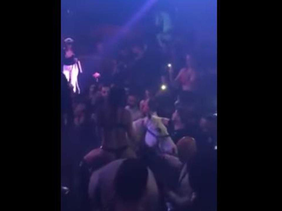 yt-perd-nachtclub
