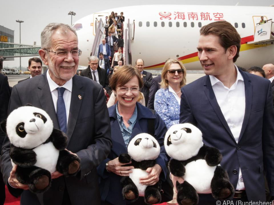 Am Pandabär kommt man in Chengdu einfach nicht vorbei