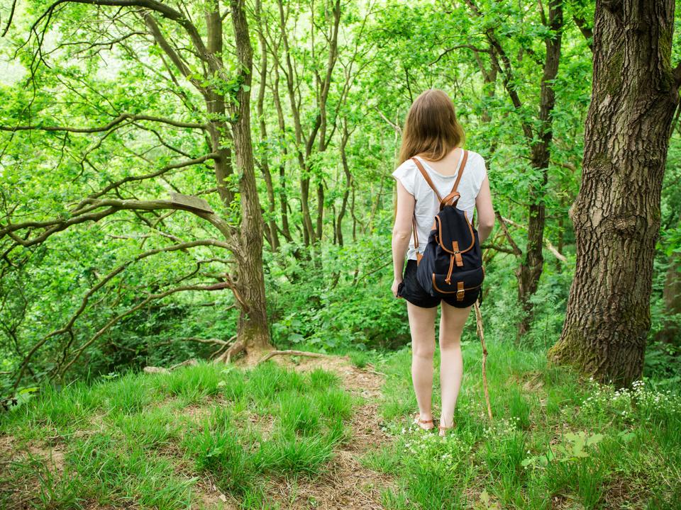 Waldspaziergang wald entspannung vital sommer frühling urlaub