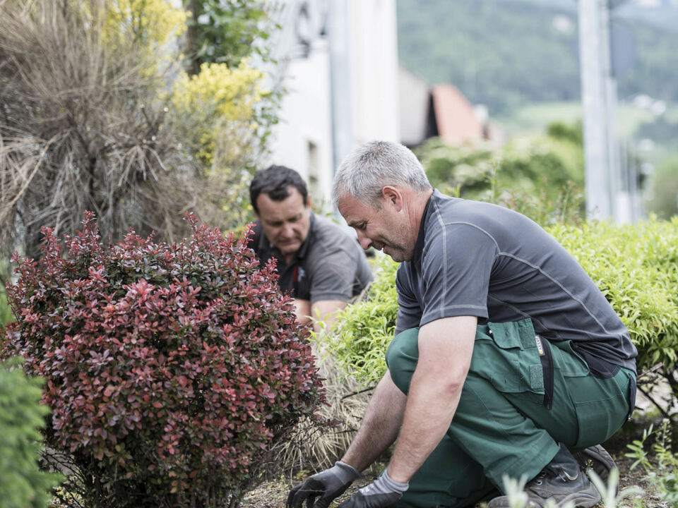 Bruneck Gärtner Pflanzen Glyphosat