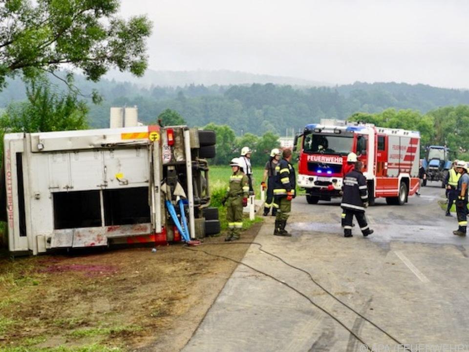 Einige der Schweine überlebten den Unfall verletzt