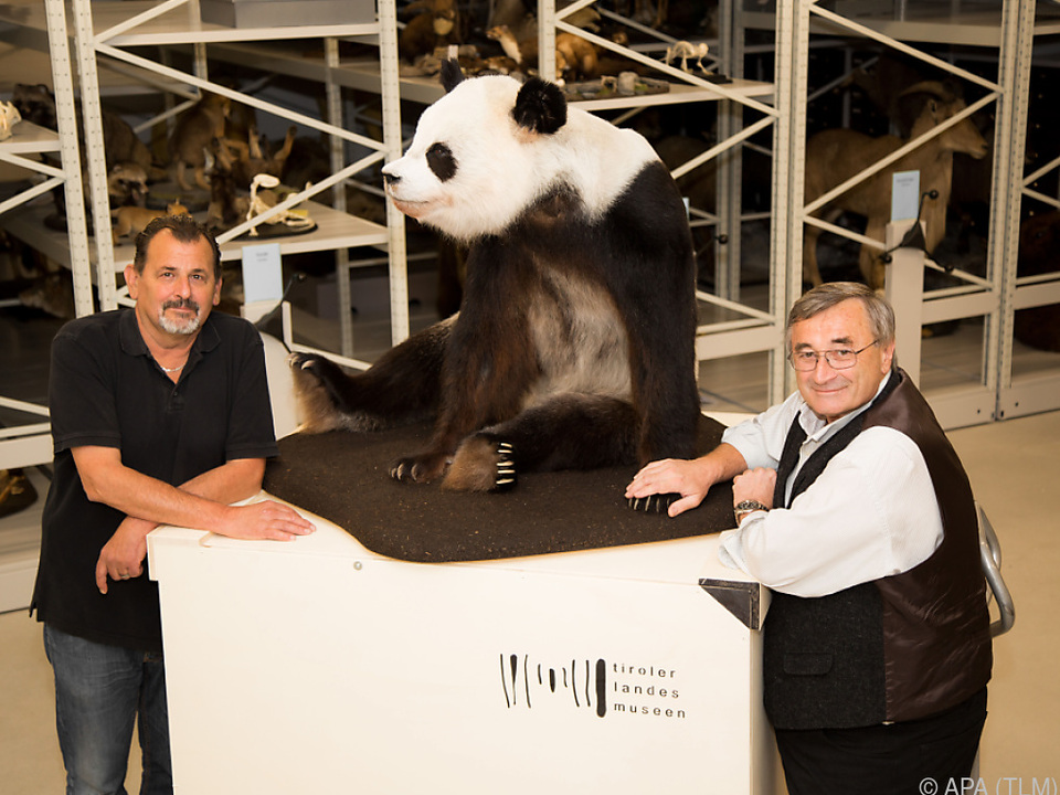 Long Hui präpariert für die Rückreise nach China