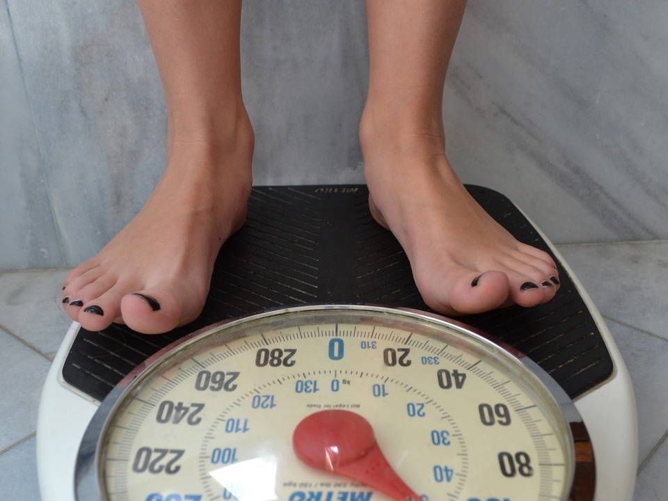 scale-2396062_1920 Gewicht Waage fett