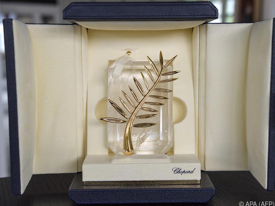 Wer wird die Goldene Palme in Cannes bekommen?