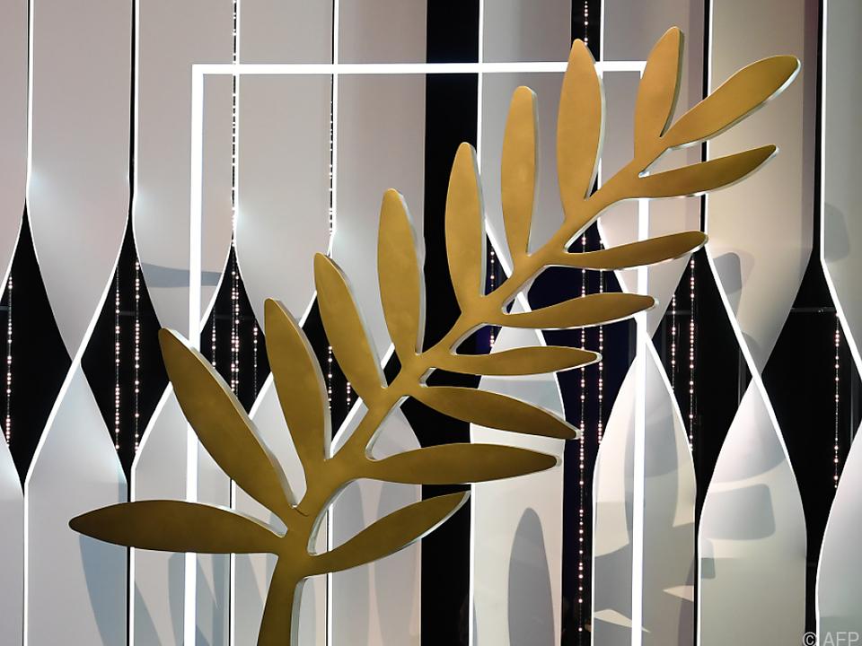 Wer wird die Goldene Palme mit heim nehmen?