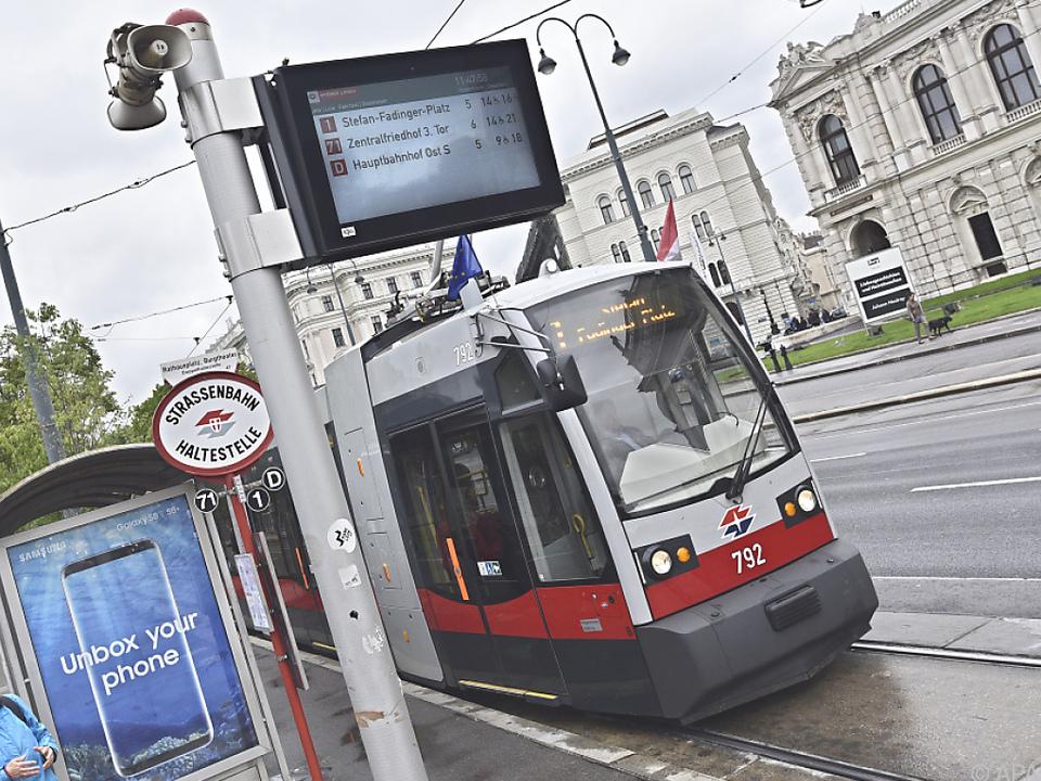 Wie werden sich Wiens Tram-Fahrer in Dresden schlagen?