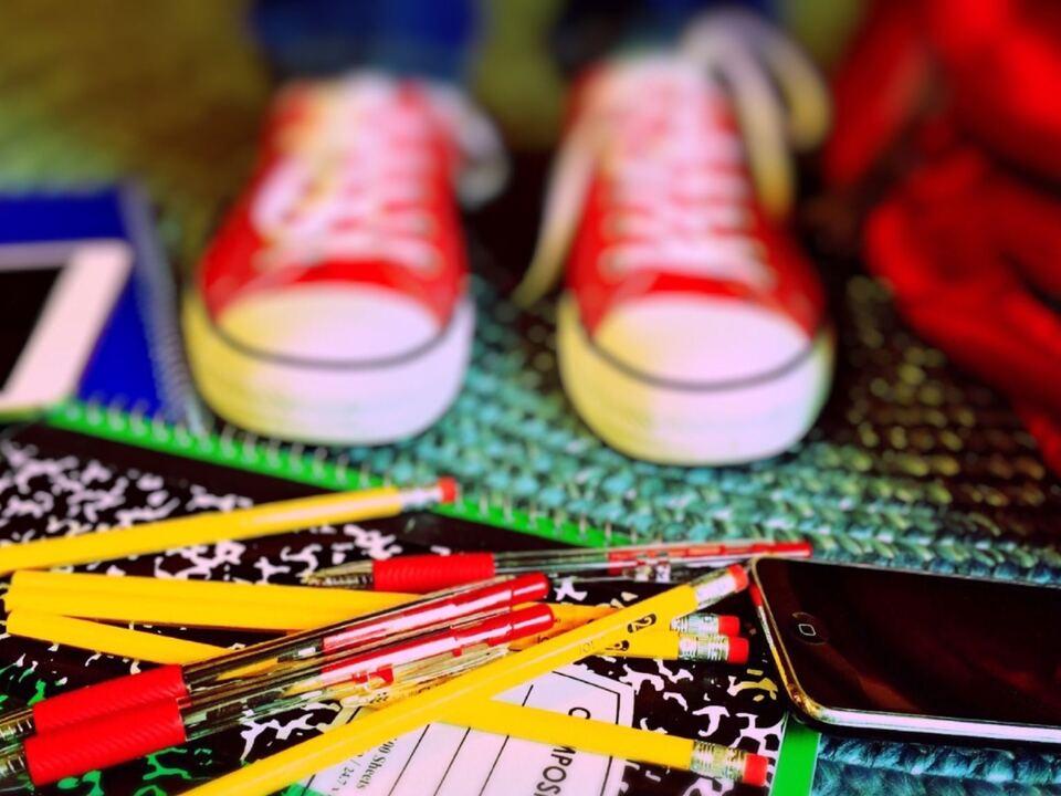 kind - schule - krise 1002259_ausbildung-bildschirm-bildung-256430
