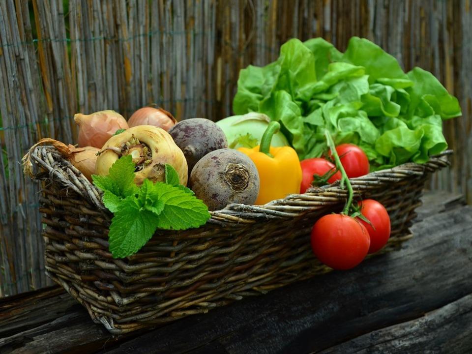 essen lebensmittel obst salat