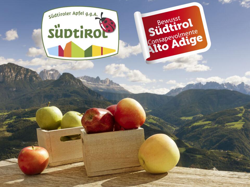 11apfel16_BS_2 Suedtirol, Apfel, Apfelsorten, Ritten, Unterinn, Aussicht,