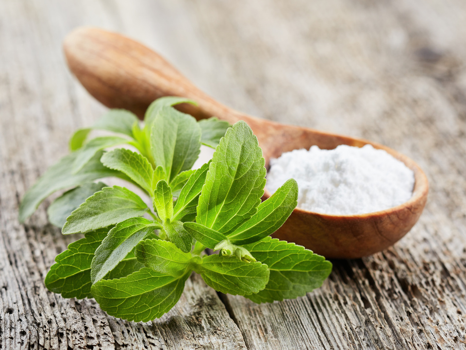 Stevia Fotolia_200780078_Subscription_Monthly_M