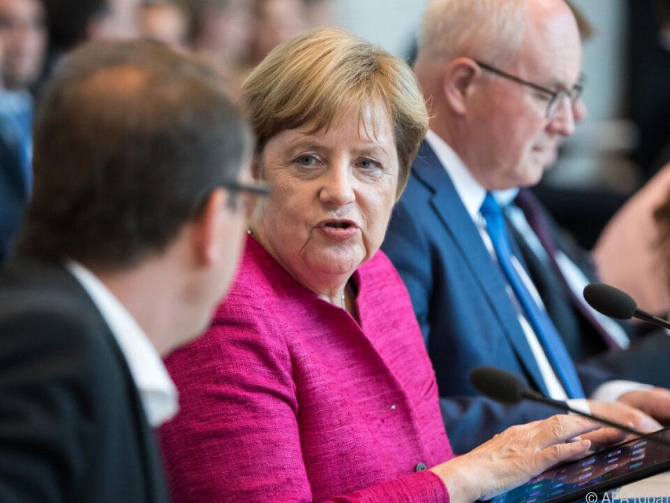 Merkel plant \