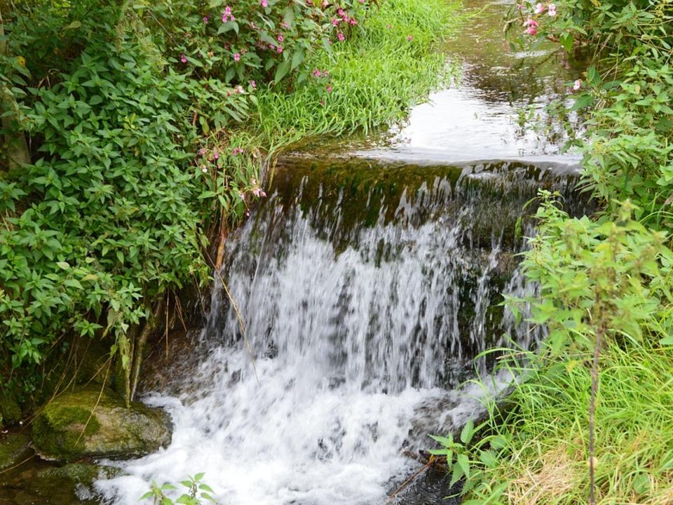1004912_Wasser bach