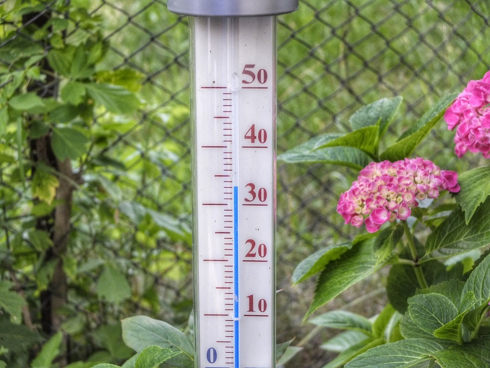 1006562_thermometer hitze sommer