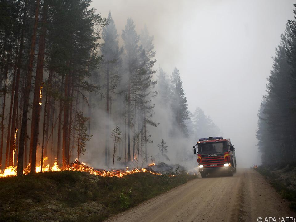 Feuerwehren kämpfen gegen Ausbreitung der Flammen