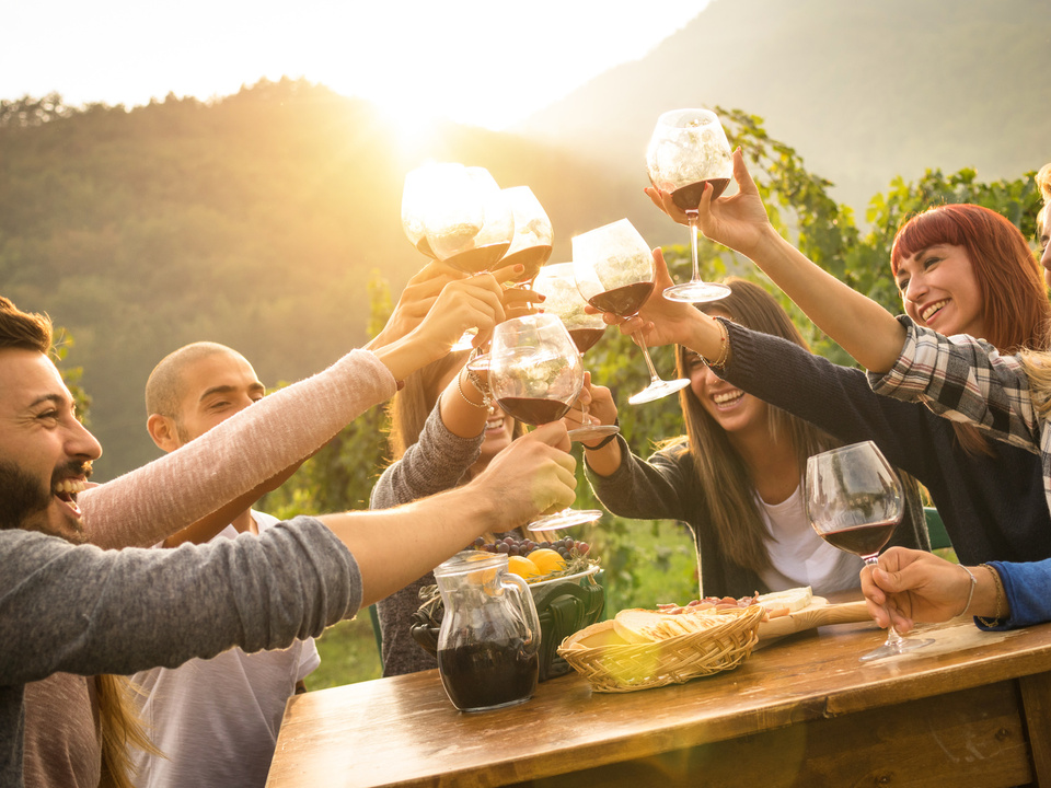 wein alkohol feiern party freunde