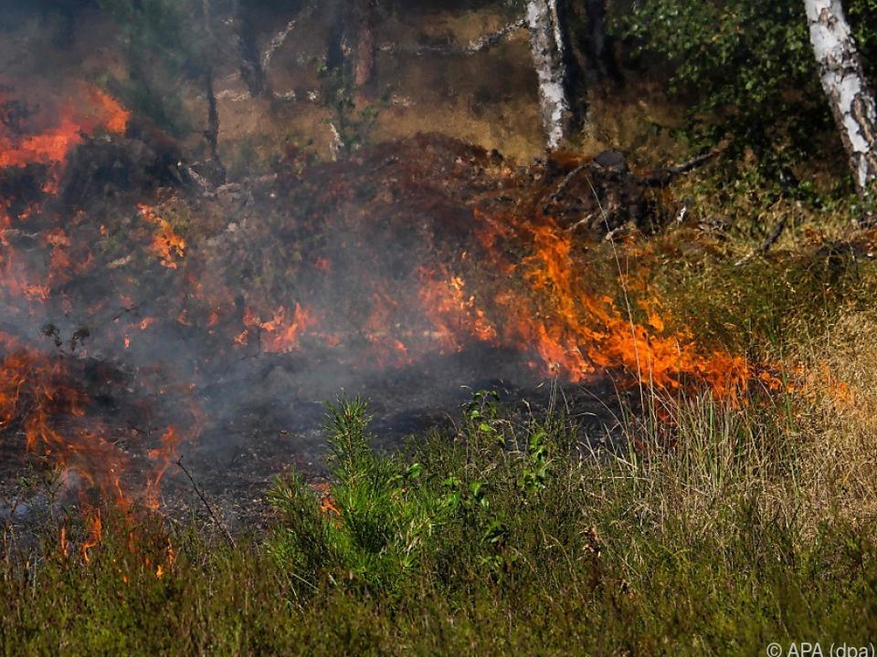 Regierung sieht Anhaltspunkte für absichtlich gelegtes Feuer