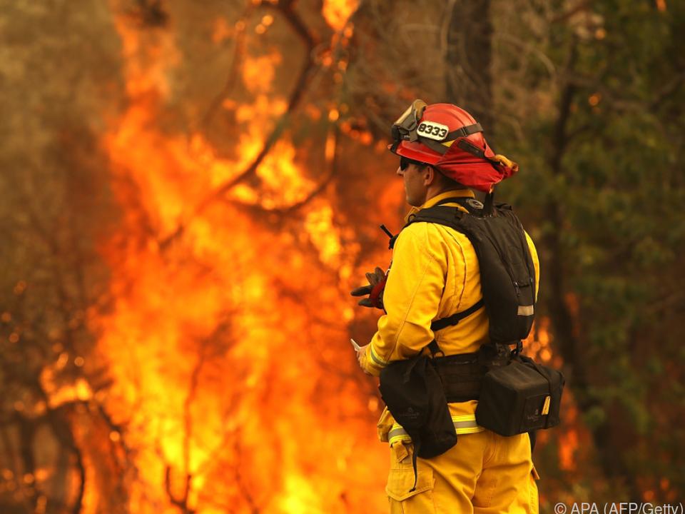 Tausende Feuerwehrleute sind im Einsatz