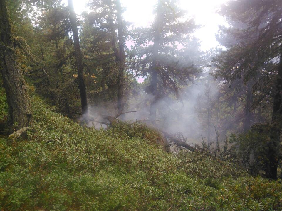 Brandeinsatz Rixnat 07.08 (7)