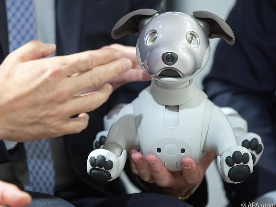 Der smarte Roboterhund sorgt für Begeisterung
