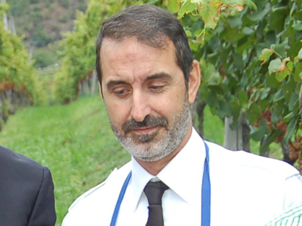 gmbz-Paolucci